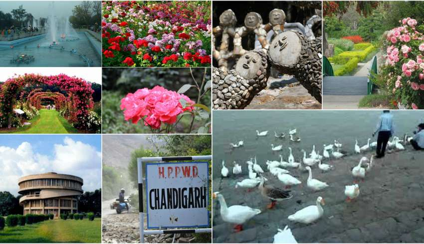 7 Lesser known facts about Chandigarh, Find out how well you know your 'City Beautiful'