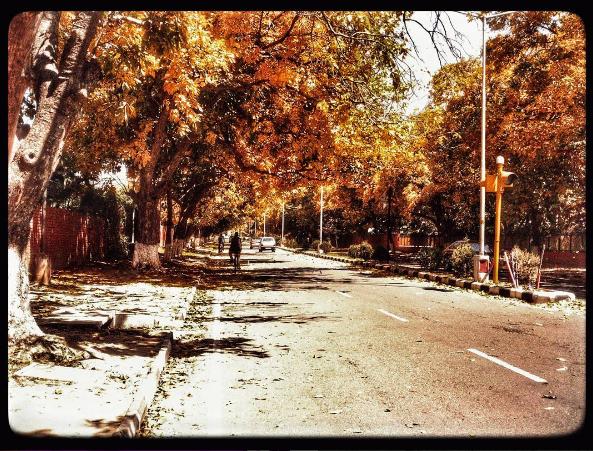 Summer in Chandigarh