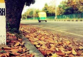 Things Chandigarh is desperately waiting