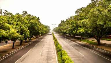 "Chandigarh Plant 40000 Trees Under Its ""Green Action Plan"""