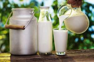 Test For Adulteration In Milk That You Can Do At Home
