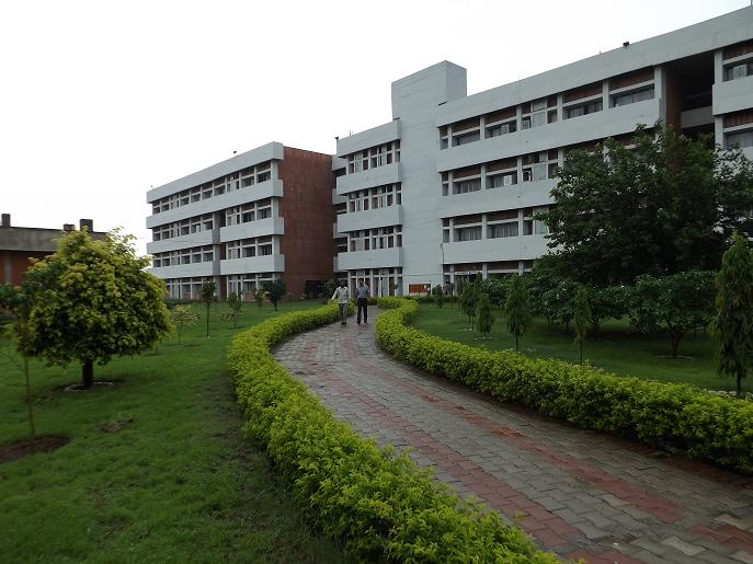 Cleanliness in-charge in each building Of PU Will Keep It Clean