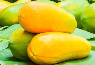 Amazing Health Benefits of Papaya That You Should Know